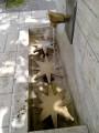 La Petite Ceinture du 16e et les Serres d'Auteuil
