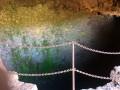 Caverne de la Glacière par le Gîte des Tamarins