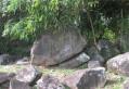 Sur les traces des roches gravées en Forêt de Montravail