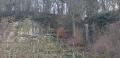 Boucle dans la réserve naturelle de Manternacher Fiels