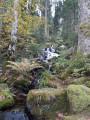 Tour du Lac de Gérardmer par la Tour de Merelle