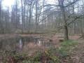 Sentier du Vuylbeek