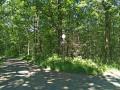 Sentier forestier