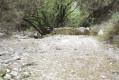 Chames Patroux par le ruisseau du Tiourre et retour par Combe Longue