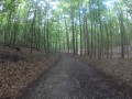 Forêt de Soignes de Tervuren à Boondael