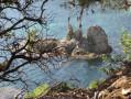 Un îlot