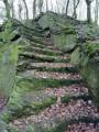 Un vestige d'une ancienne forteresse
