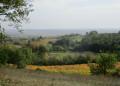 Lisle-sur-Tarn - La Toscane lisloise