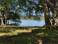 Du lac Pavin au Lac de Montcineyre