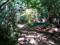 Bois de Chalmet et Petite Montagne
